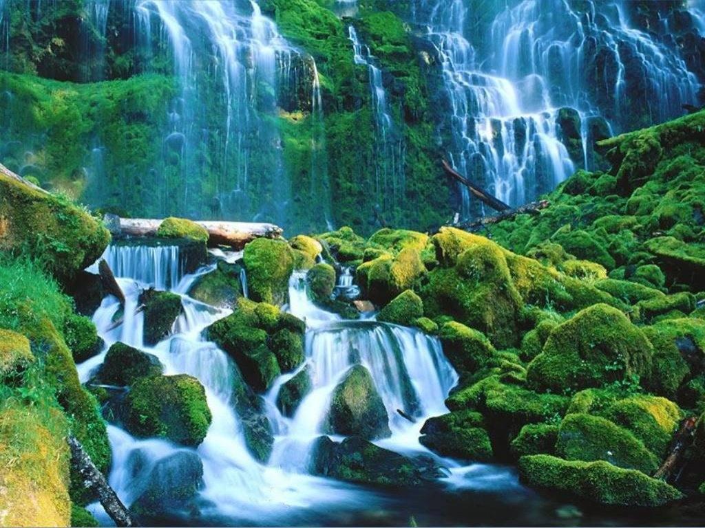 Картинки 1024 на 768 природа